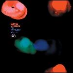 david grubbs - an optimist notes the dusk