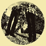 ty segall & white fence - hair