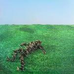 Squid - Bright Green Field (green vinyl)