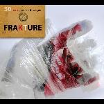frakture (sergei papail) - 30 - eine anthologie