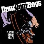 dum dum boys - flesh! trash! heat!