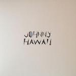johnny hawaii - new age on a board