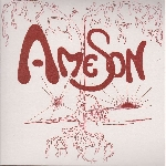ame son - black trees / your skin
