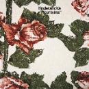 tindersticks - curtains