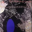 the holydrug couple - noctuary