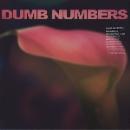 dumb numbers (w/ lou barlow - dale crover - murph ...) - s/t
