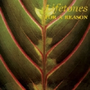 lifetones (charles bullen / this heat) - for a reason