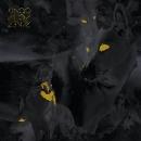 king q4 - love buzz ep