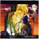 amygdala - s/t