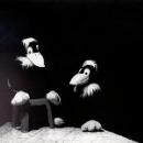 david grubbs - thirty minute raven
