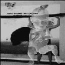 david grubbs - the coxcomb