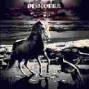 desicobra - live a bombay