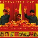 v/a - révolution pop ! (14 fuzzy and groovy french cuts from the sixties)