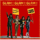v/a - glam ! glam ! glam ! (12 glam monsters from the glittering seventies)