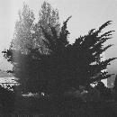 Kinematik - Murur Al-Kiram