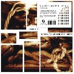 merzbow / genesis breyer p-orridge - a perfect pain