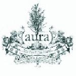 (aura) - invisible landscape