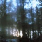 nimh / nefelheim - whispers from the ashes