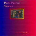 david parsons - shaman