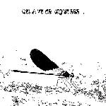 augustin brousseloux - jean-marc foussat - quentin rollet - qui a vu ce mystère...