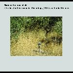 marinos koutsomichalis - 3 studies for environmental recordings, vcs3 and studio response
