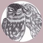 beatsystem - the sound of two eskimos kissing