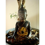 jan linton - buddha machine music