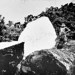 Kink Gong - ZOMIANSCAPE I - II