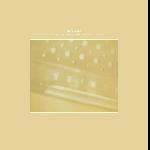 Steve Roden - The Radio - Airria (Hanging Garden) - Vein. Stems. Is. Calm