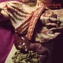 pharmakon - bestial burden (bruise clrd.)