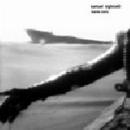 samuel sighicelli - marée noire