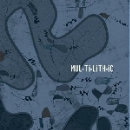 mul-ti-lith-ic - s/t