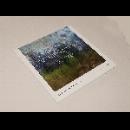 duncan pinhas - naturellement, musique pour sacré