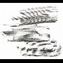 nuits (Stéphane Clor - Armand Lesecq - Tom Malmendier - Emilie Škrijelj) - Latitudes