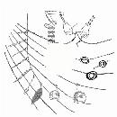 Bérangère Maximin - MMXX - 18 : KOMORA
