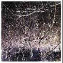 eraldo bernocchi - harold budd - robin guthrie - winter garden