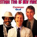 string trio of new york (bang - emery - lindberg) - common goal