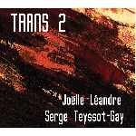 joëlle léandre - serge teyssot-gay - trans 2