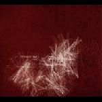 stéphane rives - fibres