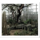 natura morta (frantz loriot - sean ali - carlo costa) - environ