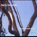 denis fournier trio (garcin - santacruz) - chagarandah