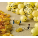 jean aussanaire - eric brochard - clement gibert (arfi) - déraisonnables