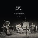 company (derek bailey) - trios