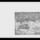 the bridge session 11 (jackson - rempis - wodrascka - lasserre - orins) - minuscules sangliers