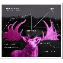 edward perraud - synaesthetic trip 02