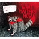 ursus minor - what matters now