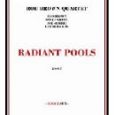 rob brown quartet - radiant pools