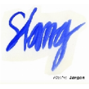 slang - elastic jargon