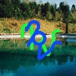 npvr (nik void - peter rehberg) - 33 33
