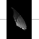 oto hiax (mark clifford & scott gordon) - two